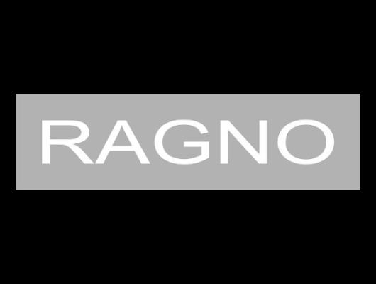 Logo Ragno
