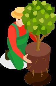 gardener instagram giveaway